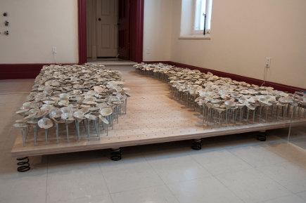 Amélie Proulx: prendre racine | 180 degrés