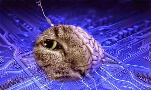 Teknologi Yang Membuat Hewan Menjadi Robot