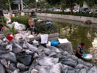 BUSCADORES DE ORO EN LOS CANALES DE BANGKOK. TAILANDIA