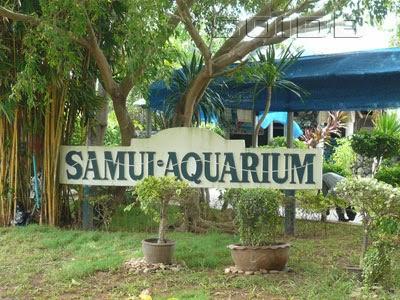 ساموي أكواريوم وحديقة النمور في كوساموي