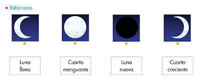 http://www.primerodecarlos.com/SEGUNDO_PRIMARIA/octubre/Anabel_F/universo/U03_061_03_AI-Fases_de_la_luna/visor.swf