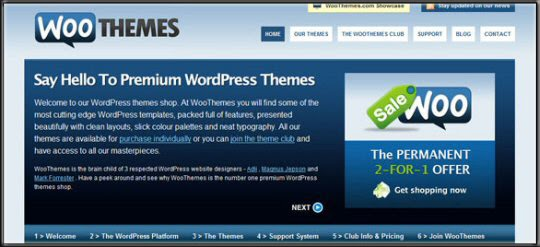 Premium WordPress Teme
