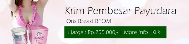 Cream Pembesar Payudara Oris