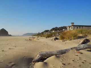 oregon coast beach photo