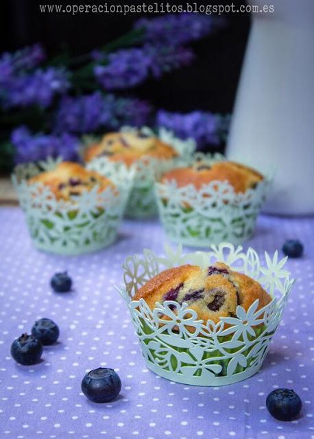muffins-arandanos-frescos