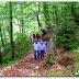 Πρόγραμμα Inform – Ένα σύγχρονο εργαλείο δημιουργείται για τα ελληνικά δάση