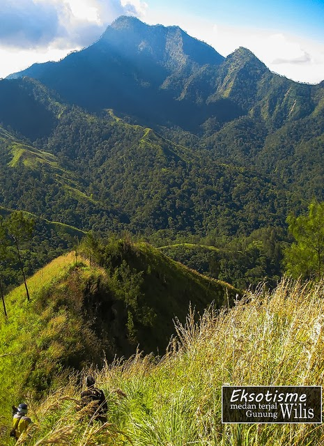 Green Backpacker Nusantara Gunung Wilis