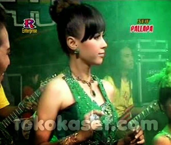 Album New Pallapa Live Alam Mutiara