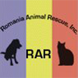 Romania Animal Rescue, Nancy Janes, animal rights, adopt a dog, stray dogs, spay neuter campaign