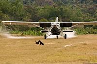 small Cessna landing
