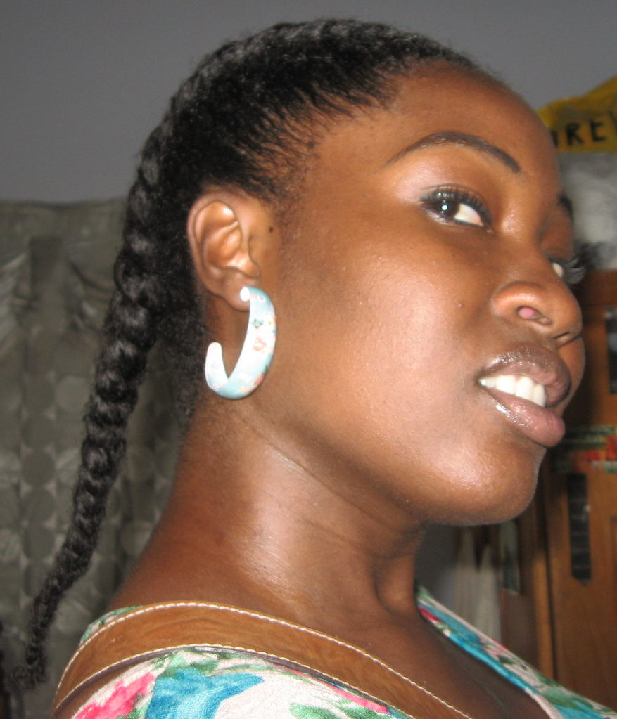 2 strand twist hairstyles : ... Missing Chronicles of August 2011 - February 2012: Styles Ive Rocked