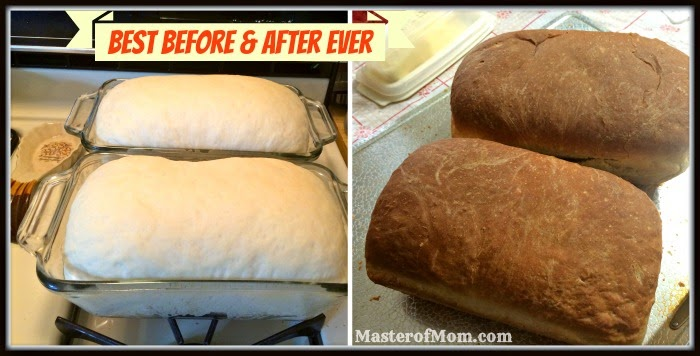 Bread Baking For Beginners