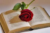 "BLOG DE LA BIBLIOTECA IES ""CONSABURUM"""