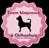 Team Blogueuse à chien