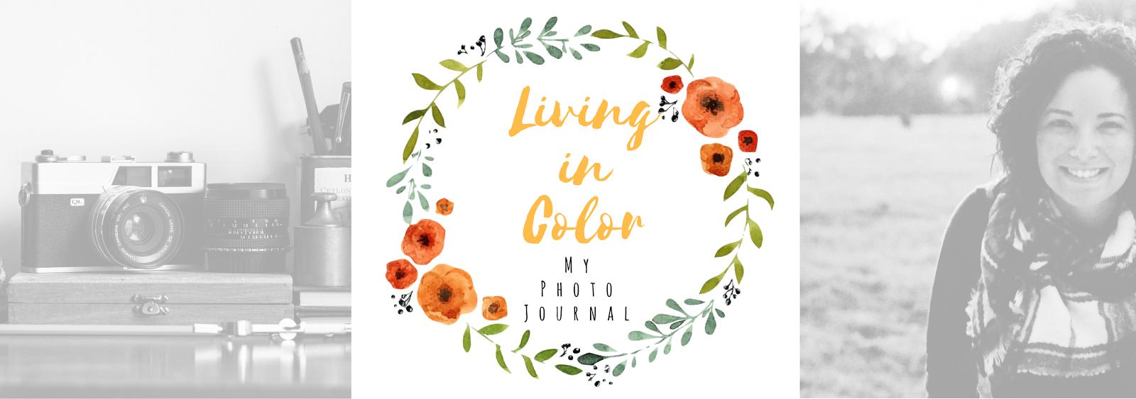 Living in Color Anita Huron