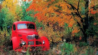 #12 Trucks Wallpaper