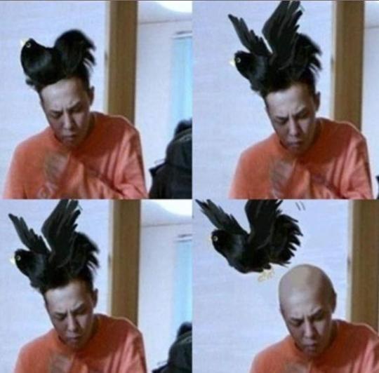 Rambut G-Dragon berubah menjadi burung