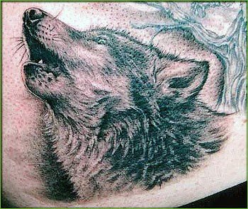 wolf howl tattoo tattoo pictures. Black Bedroom Furniture Sets. Home Design Ideas