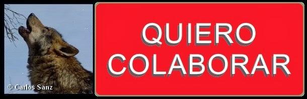 http://objetivolobovivo.com/como-colaborar.asp
