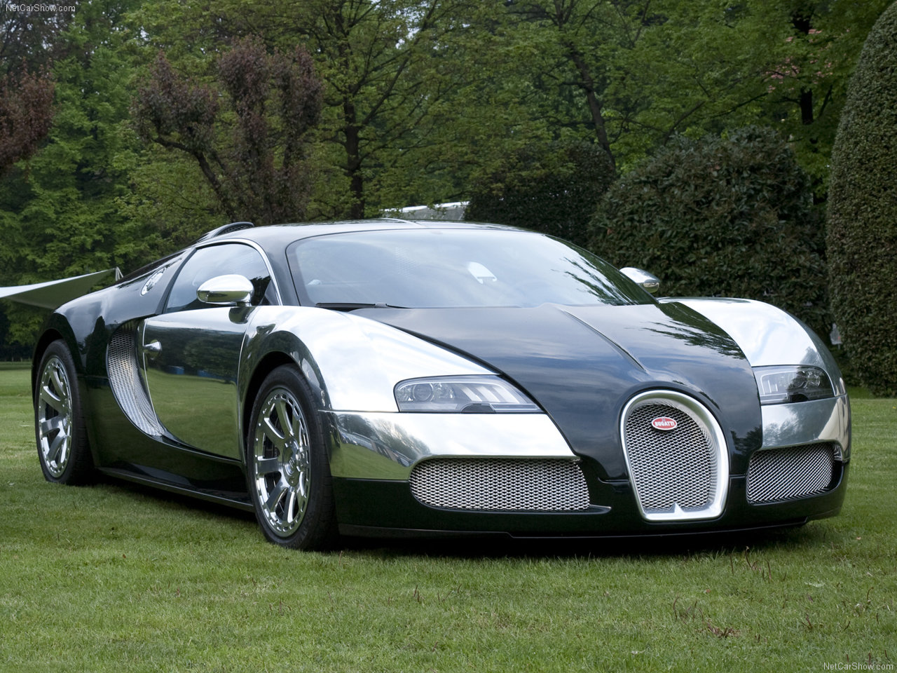 all 39 bout cars bugatti veyron. Black Bedroom Furniture Sets. Home Design Ideas