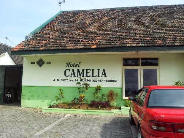 Tarif dan Alamat Hotel Camelia - Hotel Murah di Malang