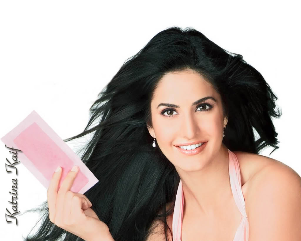 free beautiful katrina kaif wallpapers - download hot bollywood