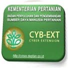 Cyber Extension