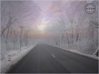 Felicitare Anul Nou 2012 La mulţi ani