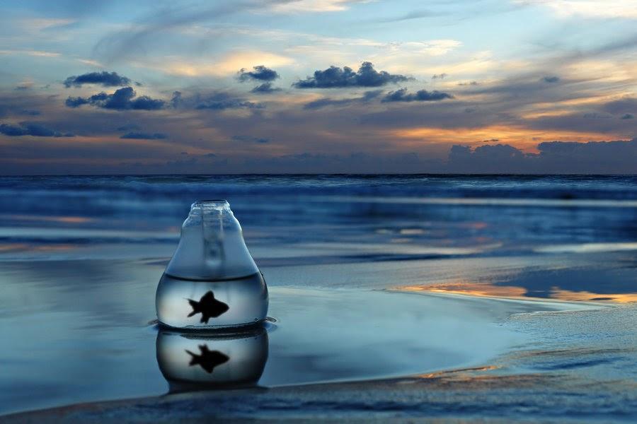 Resultado de imagen de frases con el mar