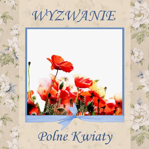 http://szuflada-szuflada.blogspot.com/2014/07/wyzwanie-7-polne-kwiaty.html