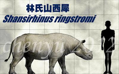 Shansirhinus