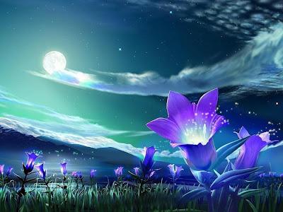 http://2.bp.blogspot.com/-7zE9t5Stdgw/T2MdXOH6dWI/AAAAAAAAAjc/Lqfz912ULWI/s1600/purple-fantasy-night-flowers.jpg