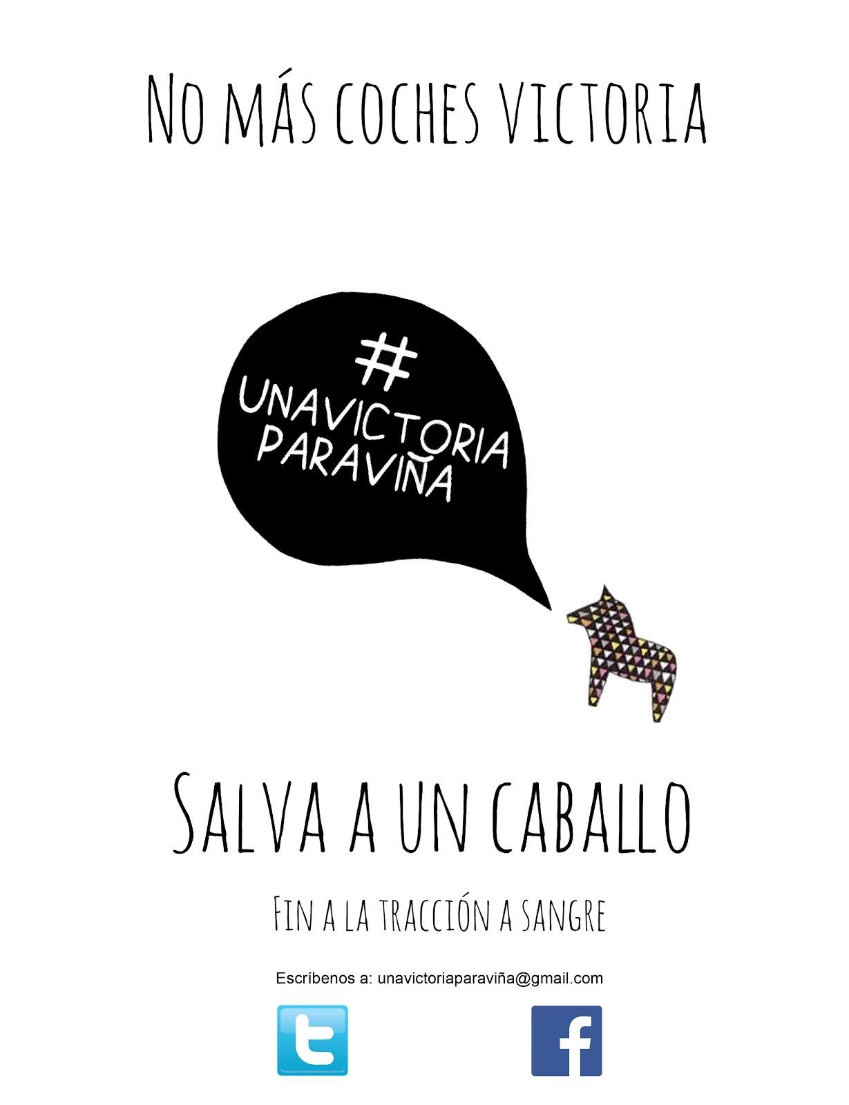Movimiento Ciudadano #UnaVictoriaParaViña