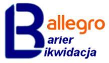 Jesteśmy też na Allegro