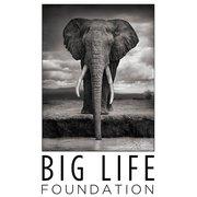 BIG LIFE FOUNDATION