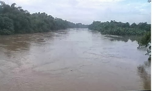 debit air bengawan solo meninggi dilihat dari jembatan mojo semanggi