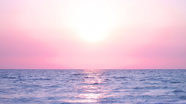 Pink Horizon HD Wallpaper