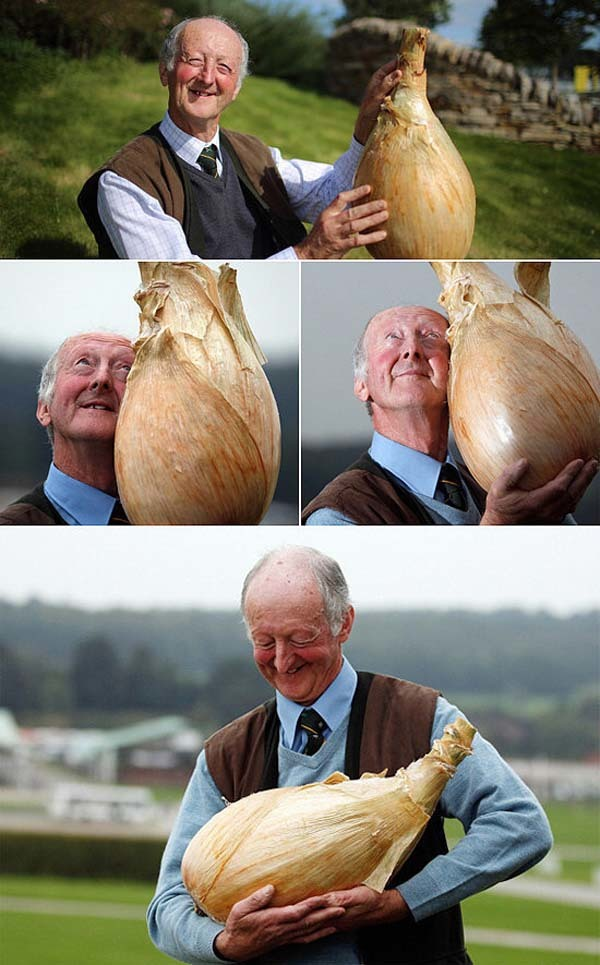 biggest onion