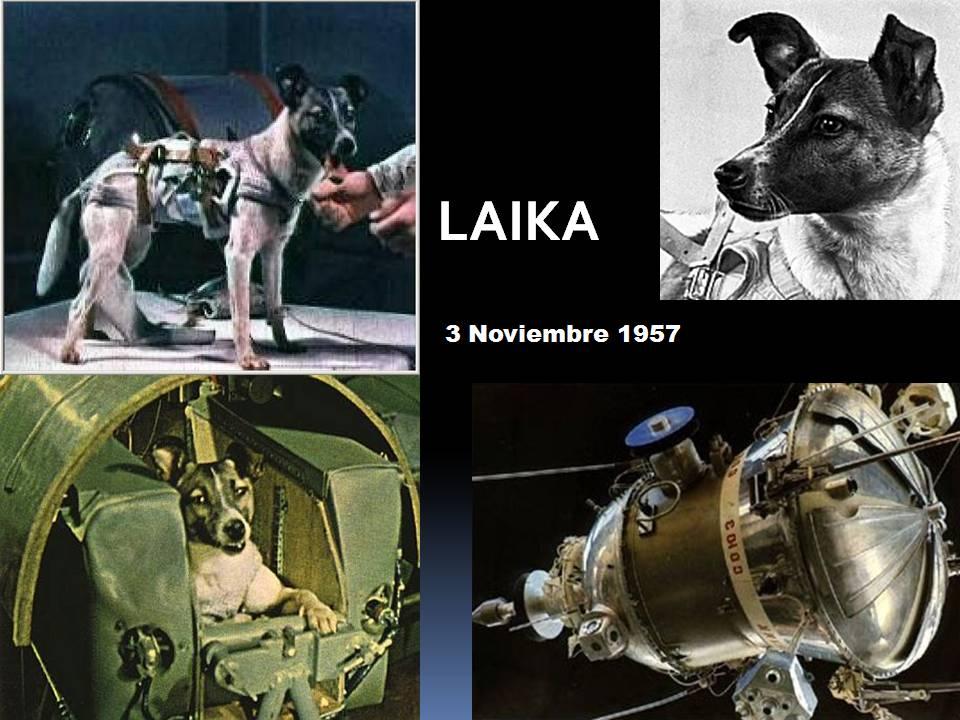 Los héroes. Laika,+3-11-1957