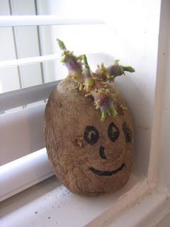 Potato with a face