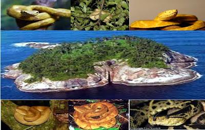 Pulau Indah Yang Tidak Boleh Di Kunjungi