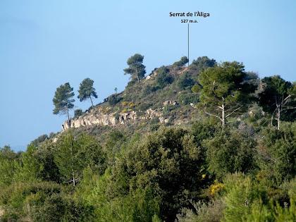 El cim del Serrat de l'Àliga vist des del nord-est
