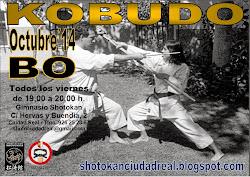 Seminario de Kobudo