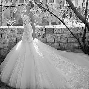 Beautiful Bride Wedding Dress Inspiration.