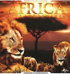 Baixe imagem de África Extraordinária (Dual Audio) sem Torrent