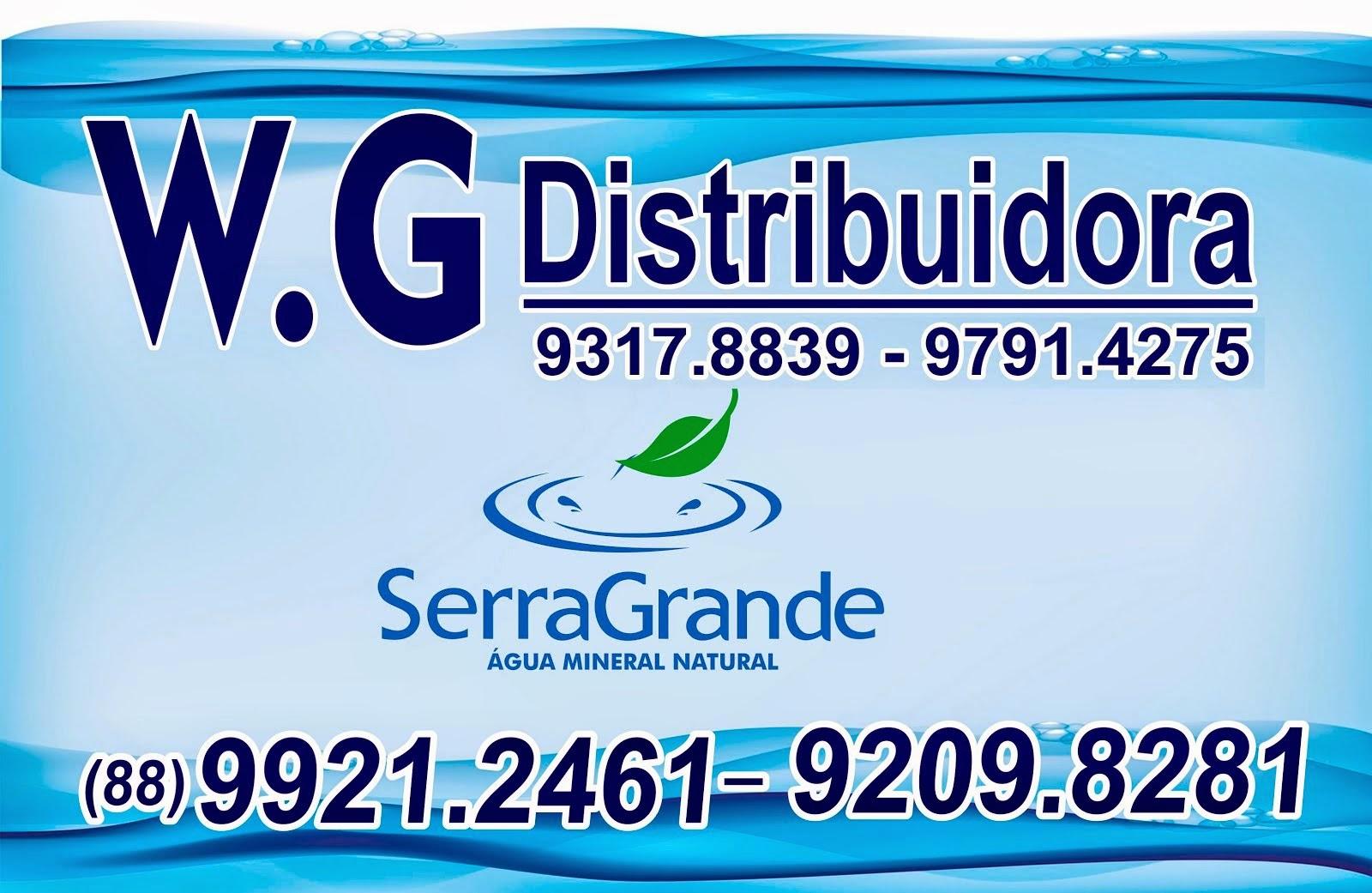 W.G DISTRIBUIDORA