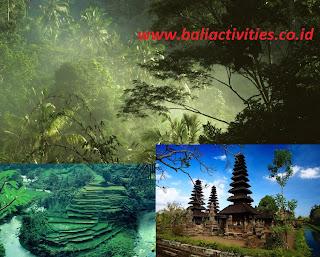 things to do in bali - wisata Alam Dengan Treking di Bali