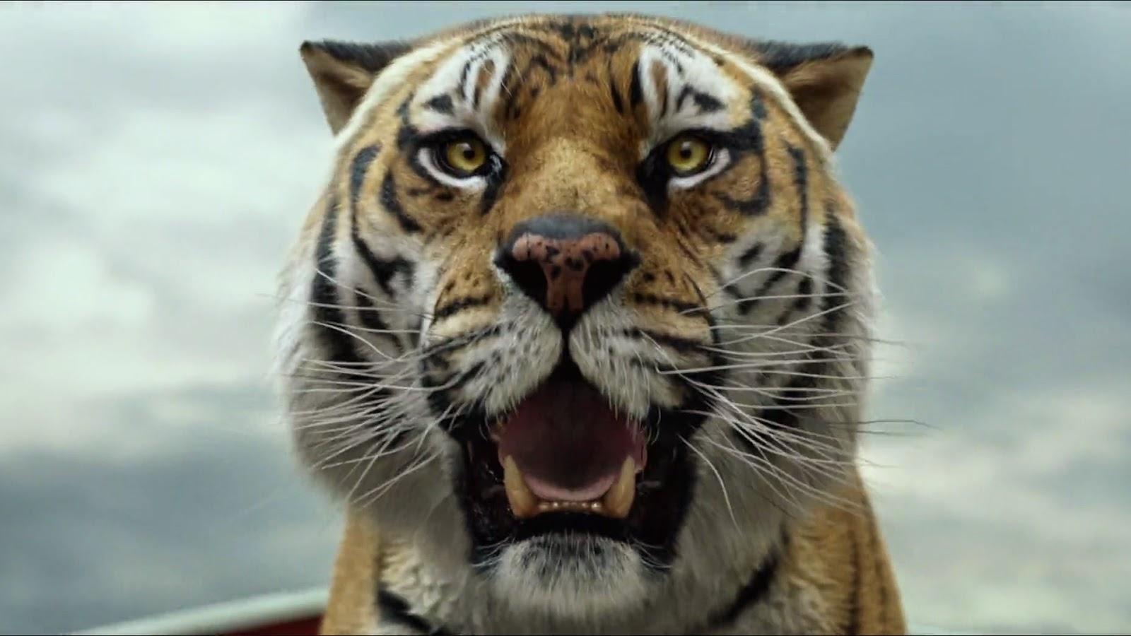 Жизнь пи прощанье с тигром