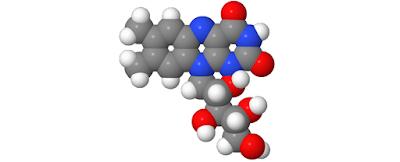 Vitamin B2 (Riboflavin), Sumber, Manfaat Dan Efek Samping