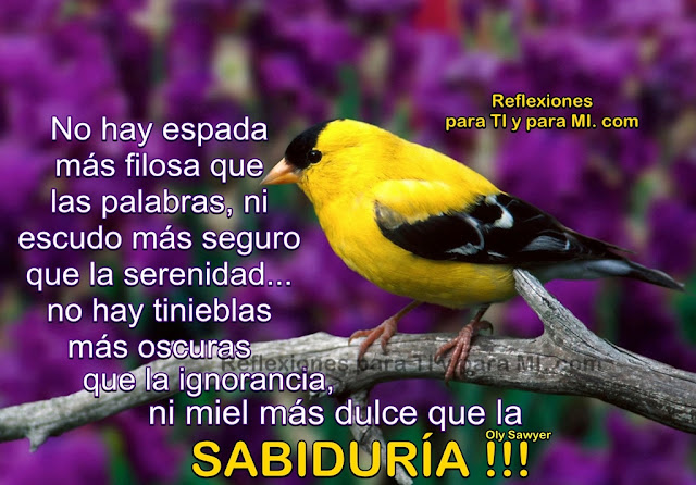 No hay espada más filosa que las palabras... ni escudo más seguro que la serenidad.  No hay tinieblas más oscuras que la ignorancia... ni miel más dulce que la SABIDURÍA !!!